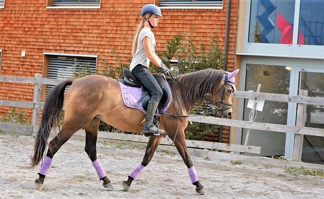 Girl riding a horse in a ménage