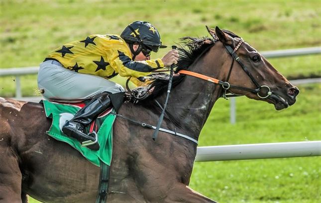 Jockey on a racehorse during a race