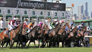Melbourne Cup horse race starting gate. Facts, history, FAQs, and records