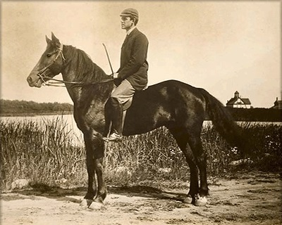 Narragansett Pacer photo from roughly the 1880's