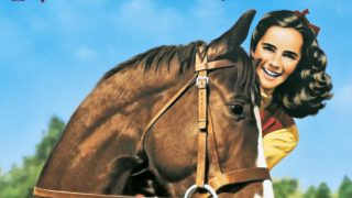 National Velvet horse movie facts and information