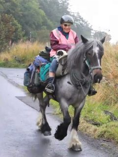 Woman treks 600 miles with horse and dog
