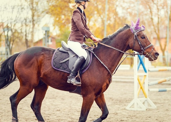 Girl riding a horse in a show jumping ring