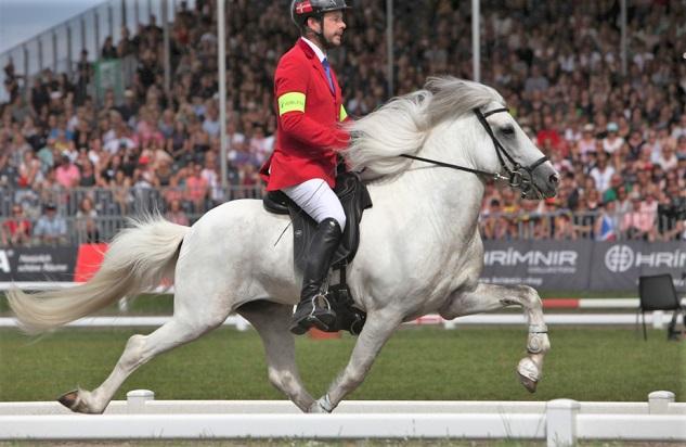 Man riding an Icelandic horse doing the Tolt gait